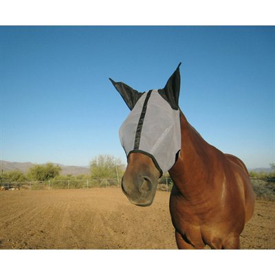 Horse Sense®  fly mask with ears Horse