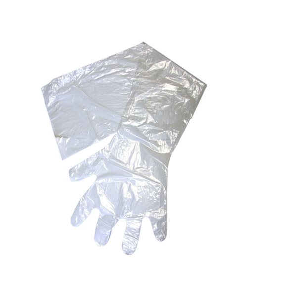 Gants OB / IA IDEAL® transparent, 1.25 mil.   Bte / 100