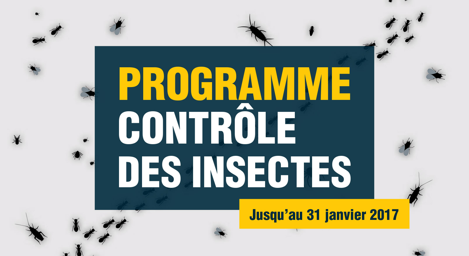 PLacement insecticide SyrVet Canada